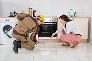 Alexander's Pest Technician treating kitchen